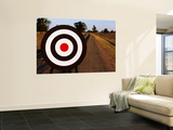 Archery Target on Country Road