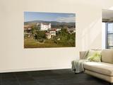 Vineyards  Dobrovo Castle and Town in Goriska Brdy Wine Region