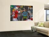 Titans Patriots Football: Foxborough  MA - Tom Brady