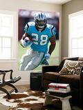 Panthers Buccaneers Football: Tampa  FL - Jonathan Stewart