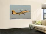 An Israeli Air Force F-15I Ra'Am