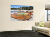Chromatic Pool Hot Spring  Upper Geyser Basin Geothermal Area  Yellowstone National Park  Wyoming