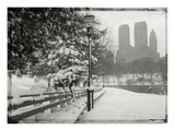 New York City In Winter VIII