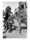 WWD - March 1972 - Arrival of the Ringling Bros Circus in New York