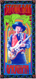 Stevie Ray Vaughan Commemoration