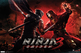 Ninja Gaiden 3 - Battle