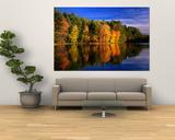 Autumn Trees in New Hampshire  New Hampshire  USA