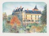 Le château de Chateaudun
