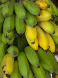 Local Farmer&#39;s Market with Bunch of Yellow and Green Bananas  Island of Penang  Malaysia