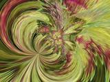 Pattern in Colius Foliage