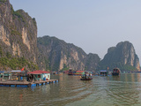 Old Boats and Junkets  Ha Long Bay  Vietnam