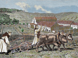Monks Plowing the Land with Oxen  Germany (1872)