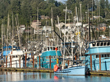 Old Fishing Boats in Harbor at Sunset  Newport  Oregon  Usa