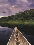 Napo Wildlife Center  Yasuni National Park  Amazon Basin  Ecuador