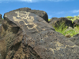 Petroglyphs on Rocks in Southwestern  Usa