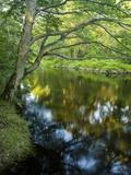 The Taunton River in Bridgewater  Massachusetts  Usa