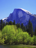 View of Half Dome Rock and Merced River  Yosemite National Park  California  Usa
