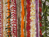 Hawaiian Flower Lei Strand
