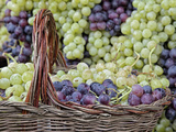 Grape Exhibit on Parade Float  La Festa Dell'Uva  Impruneta  Tuscany  Italy