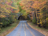 Road Through Acadia National Park in the Fall  Maine  Usa