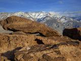 Great Basin Curvilinear Abstract-Style Petroglyphs  Bishop  California  Usa