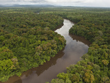 Essequibo River  Between the Orinoco and Amazon  Iwokrama Reserve  Guyana