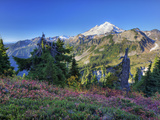 Mt Baker from Kulshan Ridge at Artist's Point  Heather Meadows Recreation Area  Washington  Usa