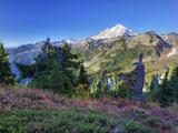 Mt Baker from Kulshan Ridge at Artist's Point  Heather Meadows Recreation Area  Washington  Usa