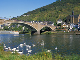 Bridge across Mosel River with Swans  Cochem  Rhineland-Palatinate  Germany