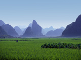 Farmland with the Famous Limestone Mountains of Guilin  Guangxi Province  China