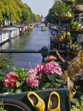 Flower Filled Cart with Houseboats and Canal  Amsterdam  North Holland  the Netherlands