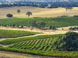 Mountadam Vineyard Winery on High Eden Road  Barossa Valley  Australia