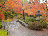 Japanese Garden  Washington Park Arboretum  Seattle  Washington  Usa