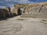 Ruins of Underground Roman-Era Villas  Bulla Regia  Tunisia