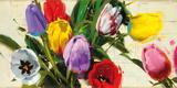 Spring no 13