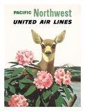 United Air Lines: Pacific Northwest  c1960s