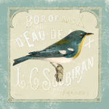 Parisian Bird I
