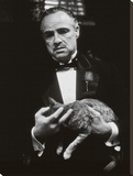 The Godfather-Cat B&W