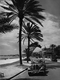 Beach Promenade in Nice  1937