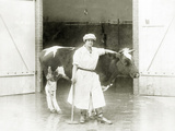 Female Butcher with a Cow  1925