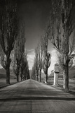 Old Country Road in Tyrol  1931