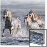 Horses Running at the Beach Acrylique par Llovet