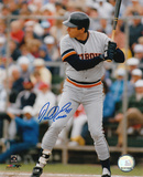 Darrell Evans Detroit Tigers Autographed Photo (Hand Signed Collectable)