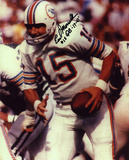 Earl Morrall Miami Dolphins with 17-0 15 Quarterback  Autographed Photo (Hand Signed Collectable)