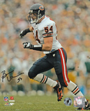 Brian Urlacher - Chicago Bears Running Autographed Photo (Hand Signed Collectable)