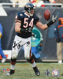 Brian Urlacher Chicago Bears - Reaching Back Autographed Photo (Hand Signed Collectable)