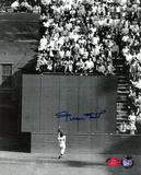Willie Mays New York Giants - The Catch