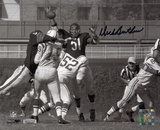 Dick Butkus Chicago Bears - Swatting Unitas Pass Autographed Photo (Hand Signed Collectable)