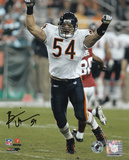 Brian Urlacher Chicago Bears - Arms Up Autographed Photo (Hand Signed Collectable)