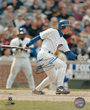 Mickey Morandini Chicago Cubs Autographed Photo (Hand Signed Collectable)